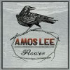 "Premier Video: ""Flower"" by Amos Lee"