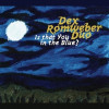 Album review of Dex Romweber Duo: Is that You in the Blue